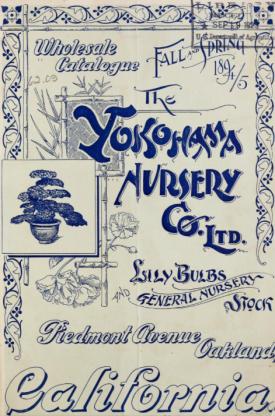 Wholesale Catalogie 1894/5