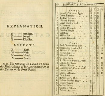 The first page of the Fruit catalogue contained in A Short ntroduction to Gardening