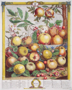 May from Twelve Months of Fruit