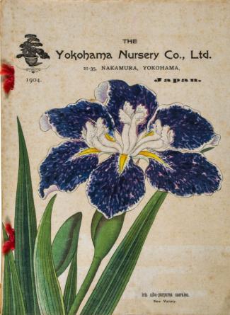 1904 catalogue http://www.the-saleroom.com/en-gb/auction-catalogues/bloomsbury-auctions/catalogue-id-blooms10063/lot-6eb5a736-7756-4704-88a4-a4e500e2813c