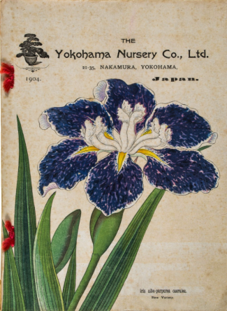 1904 catalogue http://www.the-saleroom.com/en-gb/auction-catalogues/bloomsbury-auctions/catalogue-id-blooms10063/lot-6eb5a736-7756-4704-88a4-a4e500e2813c