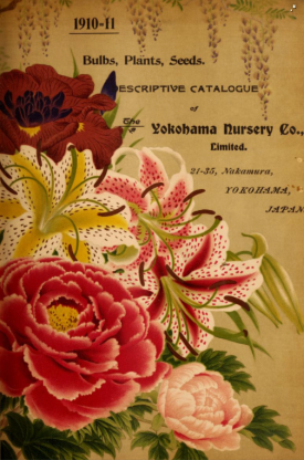 The cover of the 1910-11 ctalogue