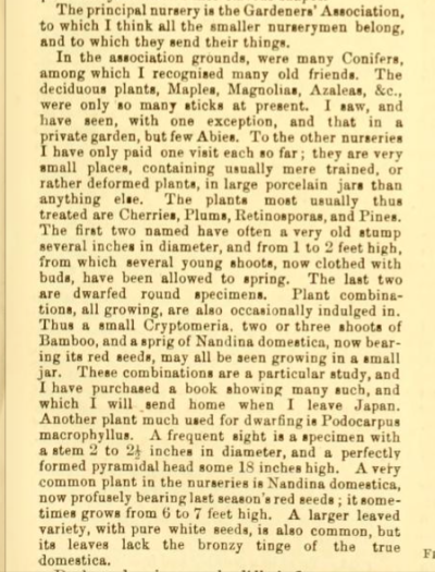 Extract from Traveller's Notes by James H Veitch, Gardeners Chronicle 1st April 1893