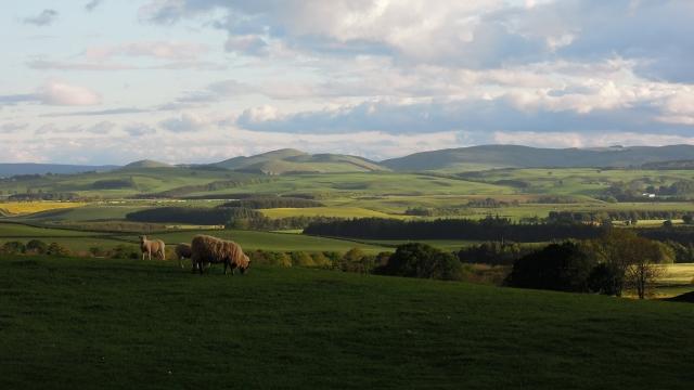 http://www.arthurlea.com/Gallery/Northumberland/3.jpg