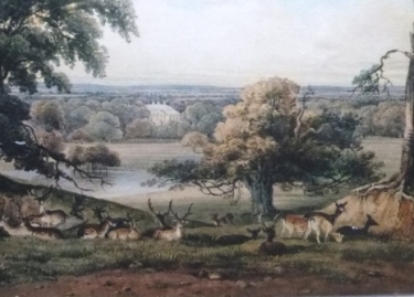 Ampthillhttp://www.landscapeinstitute.org/news/celebrating_300_years_of_capability_brown