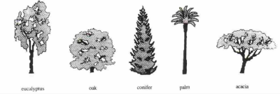 from Summer & Summit, Cross-National Rankings of Tree Shapes [full reference below]
