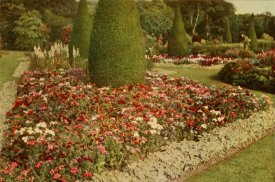 Annual Phlox in the foreground of the Flower Garden, evening Park, from Round the Year