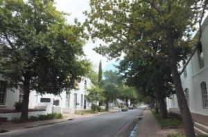 Stellenbosch, David Marsh, Feb 2016