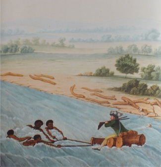 Crossing the Olifants river, F.Le Vaillant , c.1798 National Library of South Africa