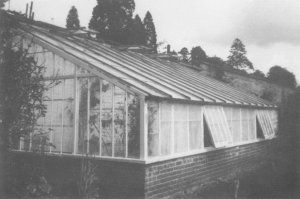 The Peach House c.1988