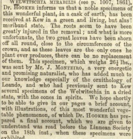 Gardener's Chronicle 20th DEc 1862