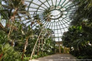 Inside the greenhouse complex at Laeken Palace, Nr Brussells. https://www.monarchie.be/en/heritage/royal-greenhouses-in-laeken