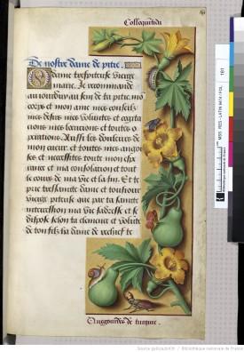 from Les Tres Grandes Heures d'Anne de Bretagne, http://gallica.bnf.fr/ark:/12148/btv1b52500984v/f330.item#