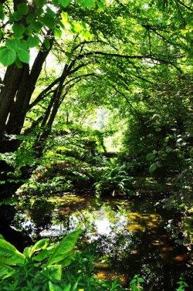 Photo by David Robins, http://www.panoramio.com