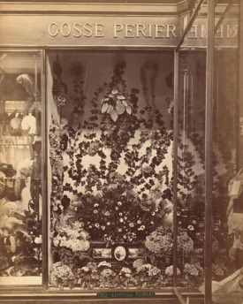 Shop window display of Artificial Flowers from the 1876 Centenniel Exhibition in Philadelphia Image from Philadelphia Free Library https://libwww.freelibrary.org/CenCol/Details.cfm?ItemNo=c021932