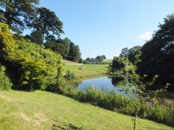 One of the modified stew ponds DM