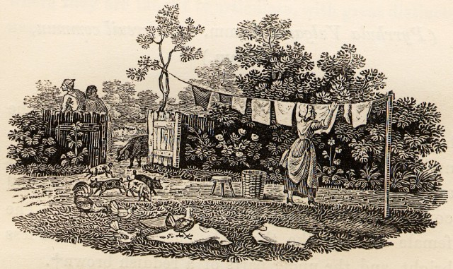 Hanging the washing, from The History of British Birds, 1797