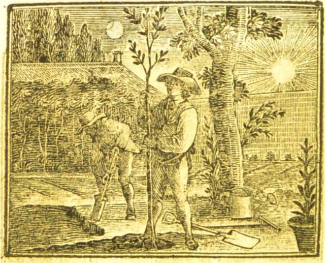 Gardening from Rev John Trusler,The progress of man and society, 1810