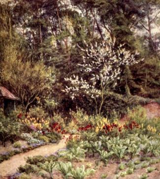 In the Kitchen Garden at Farringford, by Helen Allingham from xxxx
