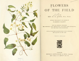 https://archive.org/details/flowersoffieldre00johnuoft