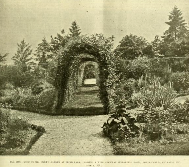 GC 25.10.1899