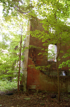 The ruins of one of the wings of Stoke Edith, 2015 http://www.ipernity.com/doc/buildings/37766182/in/keyword/4352478/self