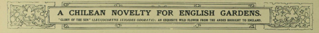 Illustrated London News, June 07, 1930