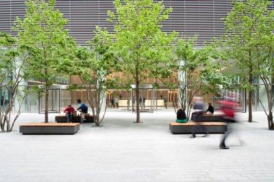 Terrific The Sky Garden The Gardens Trust Pdpeps Interior Chair Design Pdpepsorg